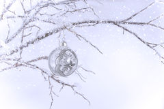 Silver & Clear Christmas Ornament on Branch