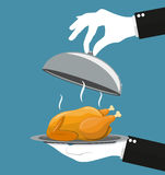 Silver cloche serving Roasted chicken on plate. Waiter hand with silver cloche serving Roasted chicken on plate. vector illustration in flat style Stock Images