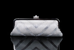 Silver clutch purse Royalty Free Stock Image
