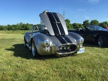 Silver Cobra with black stripes at a cars and coffee event in Komoka Ontario stock image