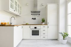 Silver cooker hood in minimal white kitchen interior with plant. On wooden countertop. Real photo stock photos