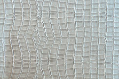 Silver crocodile leather Royalty Free Stock Photography