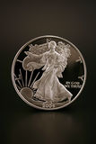 Silver Dollar. One American Eagle Silver Bullion Coin (legal tender Royalty Free Stock Image