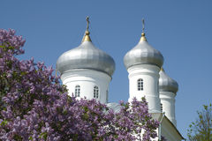 Silver domes Stock Image