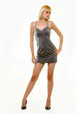 Silver dress Stock Photos