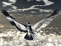 Silver Eagle. A background with a view of a silver eagle flying in the sky Stock Images