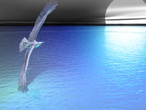 Silver Eagle Blue. Silver eagle in flight before the moon Stock Photography