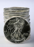 Silver Eagle. Royalty Free Stock Photography