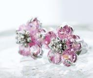 Silver earrings Stock Image
