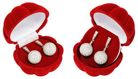 Silver earrings in a beautiful caskets - shells Stock Photo