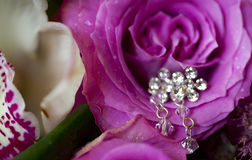 Silver earrings on pink rose with dew drops Royalty Free Stock Image