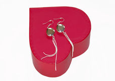 Silver earrings gift Royalty Free Stock Image