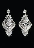 Silver earrings with jewels Stock Photo