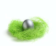 Silver egg in green nest Royalty Free Stock Photo