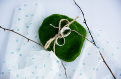Silver engagement rings moss, rope lace branches, cloth in peas. Concept wedding day Stock Image