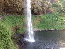 Silver faller Salem Oregon Arkivbild