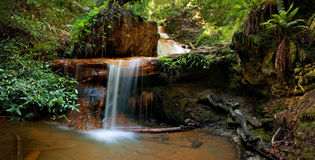 Free Silver Falls On Berry Creek Trail, Big Basin Royalty Free Stock Photography - 23076547