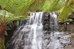 Silver Falls, Tasmania. The beautiful Silver Falls in Hobart, Tasmania Royalty Free Stock Image