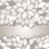 Silver flowers and leaves borders with space for text Royalty Free Stock Image