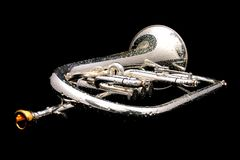 Silver fluegelhorn in night Stock Images