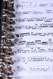 Silver flute instrument Stock Photos