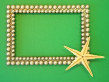 Silver frame and fish star Stock Images