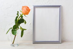 Silver frame mockup with orange-apricot rose in glass vase Royalty Free Stock Photography