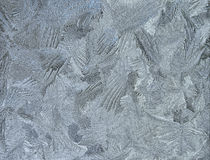 Silver frosty pattern on pane Stock Image