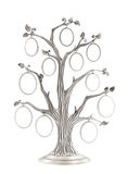 Silver genealogical family tree Royalty Free Stock Photos
