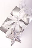 Silver Gift Bag with Star Royalty Free Stock Images