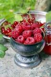 Silver goblet of raspberries Stock Photo
