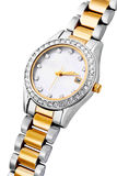 Silver and gold exclusive watch isolated Stock Images