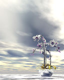 Silver and gold orchids Royalty Free Stock Photo