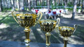 Silver and gold trophy cups on bokeh nature background. Clip. Trophy cup on nature background. Silver and gold trophy cups on bokeh nature background. Trophy cup royalty free stock photo