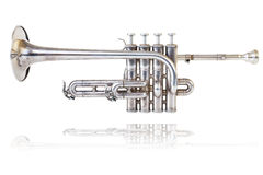 Silver golden piccolo trumpet Stock Image