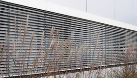 Silver grass in front of shuttered windows. Facade of a modern building with row of windows shuttered with venetian metal blinds and chinese silver grass in Royalty Free Stock Photo