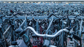 Silver and Gray Metal Bikes Parked in Rows Outside Royalty Free Stock Photography