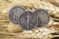 Silver Half Dollars on Wheat Stalk Royalty Free Stock Images