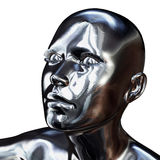 Silver Head Royalty Free Stock Images