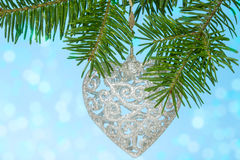 Silver heart on the fir branch Royalty Free Stock Photos