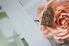 Silver pendant, heart-shaped amulet in a cage on the background of a blooming rose stock image