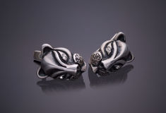 Silver jewelery earrings Royalty Free Stock Images