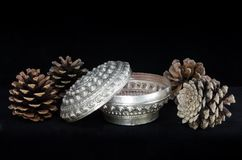 Silver jewelry box isolated Stock Image