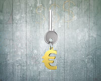 Silver key with golden euro sign shape keyring Stock Photo