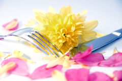 Silver knife and fork with dahlia and petals Stock Photos