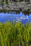Silver Lake στη κομητεία του Sullivan Στοκ εικόνα με δικαίωμα ελεύθερης χρήσης
