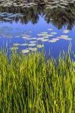Silver Lake στη κομητεία του Sullivan Στοκ Φωτογραφία