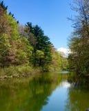 Silver Lake-Duinen Royalty-vrije Stock Foto's