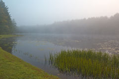 Silver Lake in the early morning. Silver Lake in Sullivan County of New York State in the early morning stock images