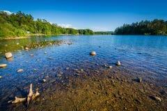 Silver Lake i Tilton, New Hampshire arkivfoton